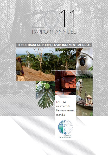 Rapport annuel 20121