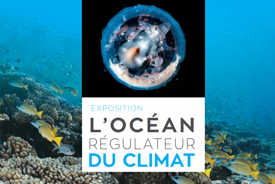 GIZLM-affiche-expo-ocean-regulateur-climat